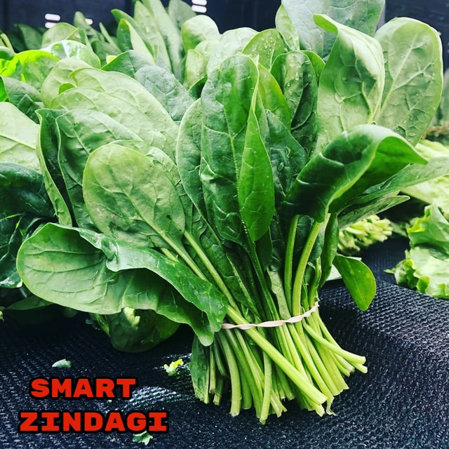 Spinach in Hindi
