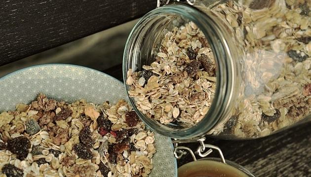 benefits of oatmeal in hindi