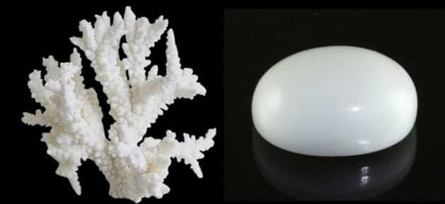 white coral stone benefits in hindi