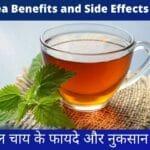 Herbal Tea Benefits and Side Effects in Hindi- हर्बल चाय के फायदे और नुकसान