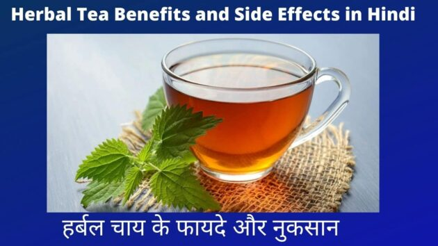 Herbal Tea Benefits and Side Effects in Hindi