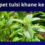 All About Basil Leaves in Hindi – खाली पेट तुलसी के पत्ते खाने के लाभ और नुकसान